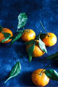 02 lauren lester orange