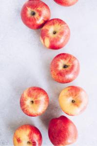 03 lauren lester apple
