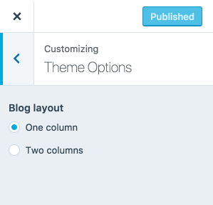 20 customizer theme options